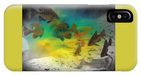 Dive Buddies IPhone Case