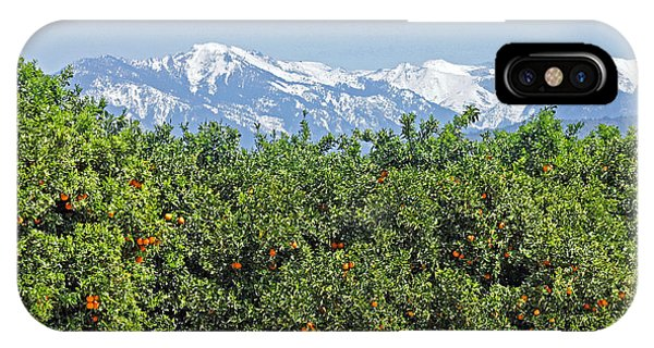 IPhone Case featuring the photograph Dm6850-e Orange Grove And The Sierra Nevada Ca by Ed Cooper Photography
