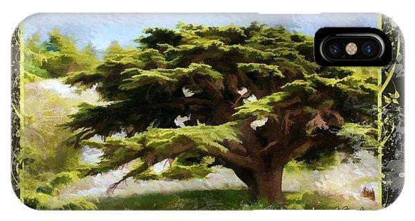 Do-00318 Cedar Barouk - Framed IPhone Case