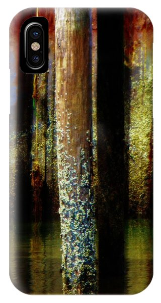 Dock At Low Tide IPhone Case