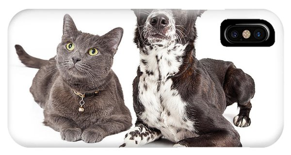 Dog And Cat Laying Looking Up IPhone Case