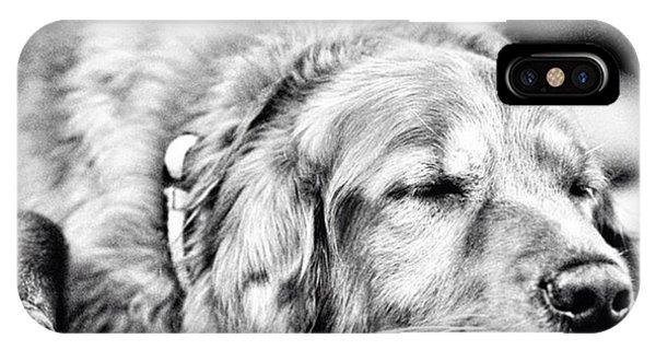 Summer iPhone Case - Dog Days Of Summer #tucker #louisiana by Scott Pellegrin