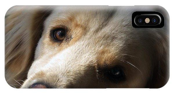 Dog Eyes IPhone Case