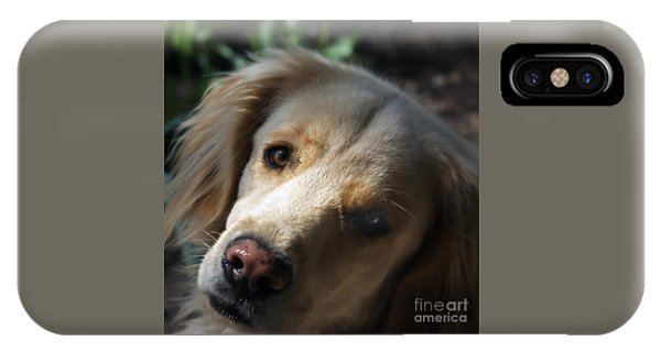 Dog Eyes IPhone Case