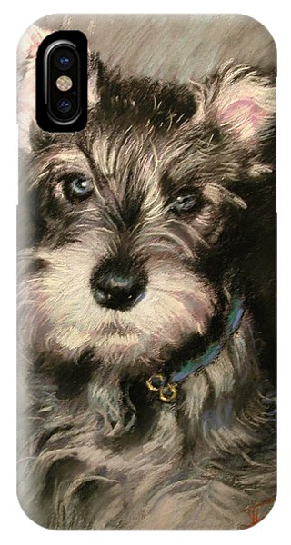Pet Portrait iPhone Case - Dog In Blue Collar by Ylli Haruni