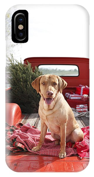 Dog In Truck Bed With Pine Tree Outdoors Phone Case by Gillham Studios