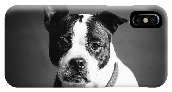 Dog - Monochrome 1 IPhone Case