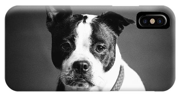 Dog - Monochrome 1 IPhone Case