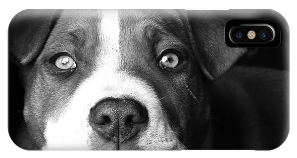 Dog - Monochrome 2 IPhone Case