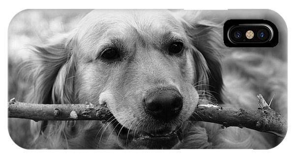 Dog - Monochrome 4 IPhone Case