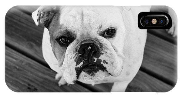 Dog - Monochrome 6 IPhone Case