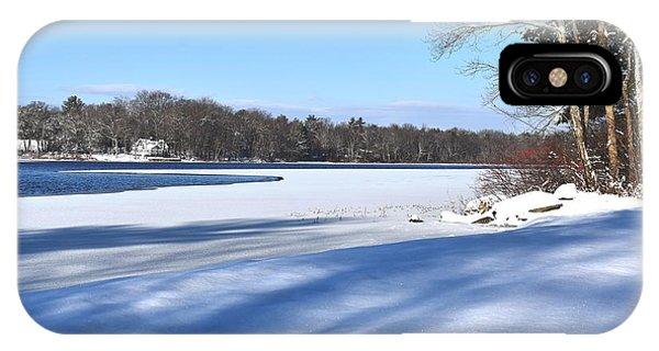 Dog Pond In Winter 1 IPhone Case