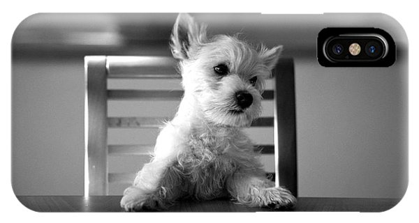 Dog Sitting On The Table IPhone Case