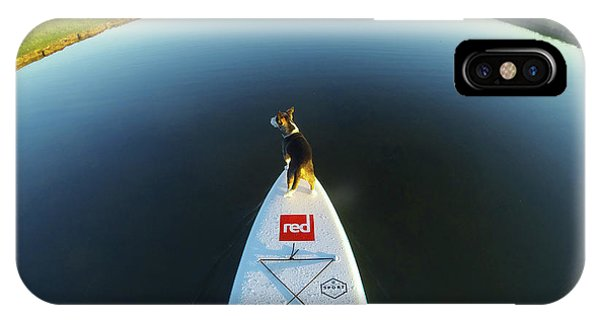 IPhone Case featuring the photograph Dog Sup  by Will Gudgeon