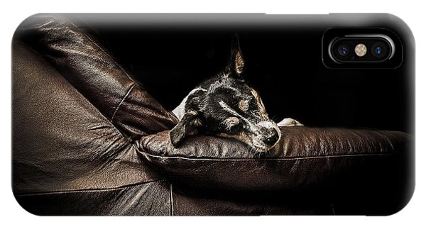 Jack iPhone Case - Dog Tired by Paul Neville
