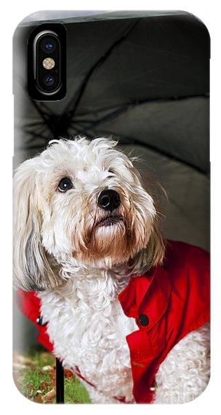 Dog Under Umbrella IPhone Case