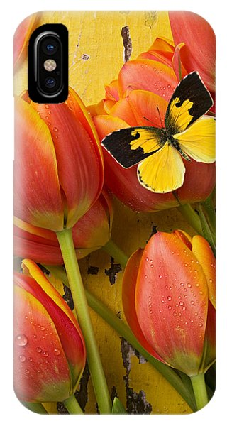 Pollination iPhone Case - Dogface Butterfly And Tulips by Garry Gay
