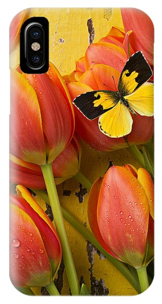 Beautiful iPhone Case - Dogface Butterfly And Tulips by Garry Gay