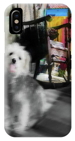 Dogie In The Patio Art  IPhone Case