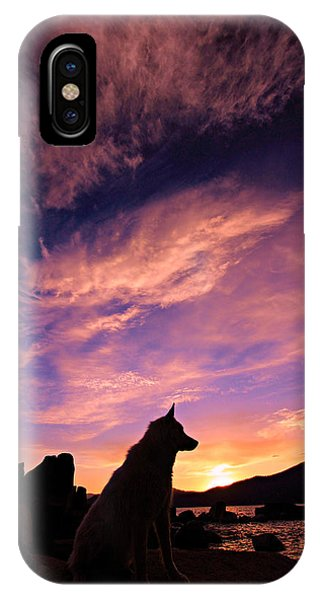 Dogs Dream Too IPhone Case