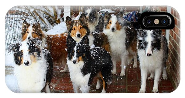 Dogs During Snowmageddon IPhone Case