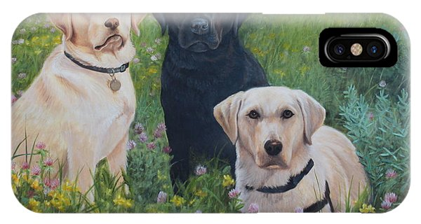 IPhone Case featuring the painting Dogs With Wings by Tammy Taylor