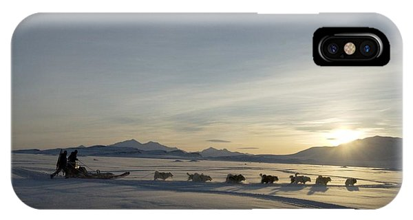 Sled Dog iPhone Case - Dogsledge, Northern Greenland by Louise Murray