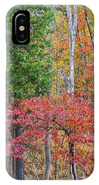Dogwood And Cedar IPhone Case