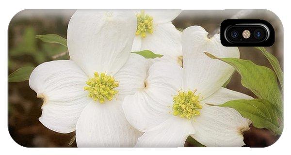 Dogwood Blossom Trio IPhone Case