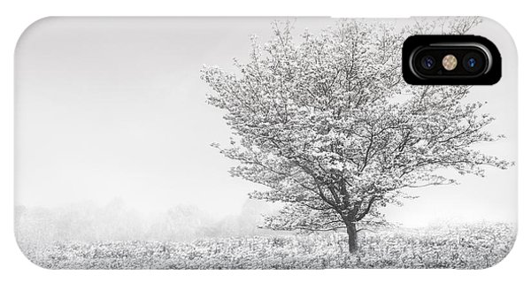 dogwood tree iphone case dogwood in the mists black and white by debra and dave