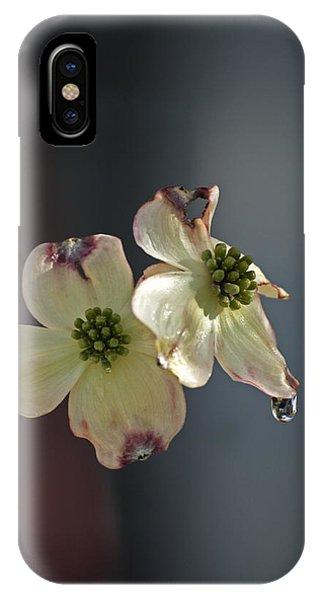 Dogwood Tear IPhone Case