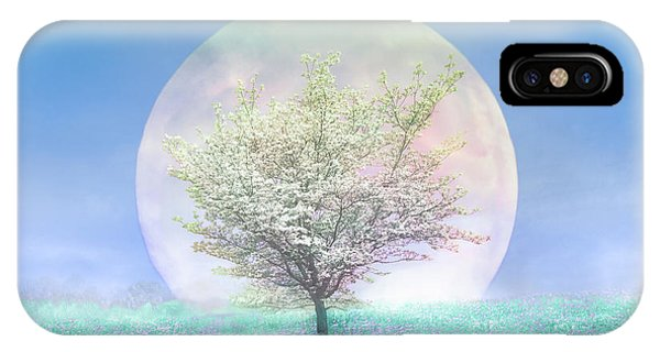dogwood tree iphone case dogwoods on a blue moon by debra and dave vanderlaan