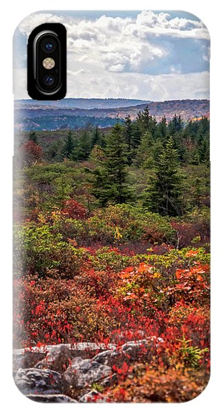 Dolly Sods Wilderness In Autumn 4273 IPhone Case