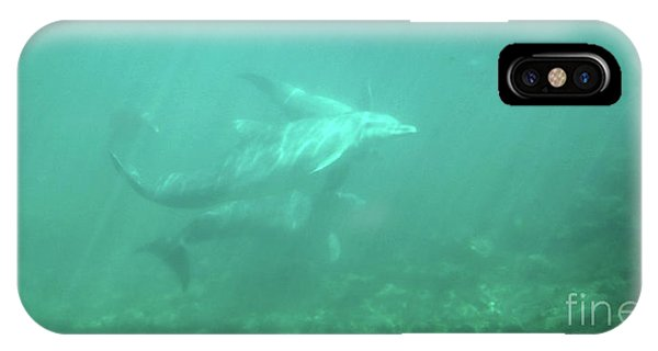 IPhone Case featuring the photograph Dolphin Swim by Francesca Mackenney