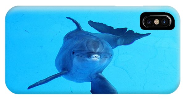 Dolphin Underwater IPhone Case
