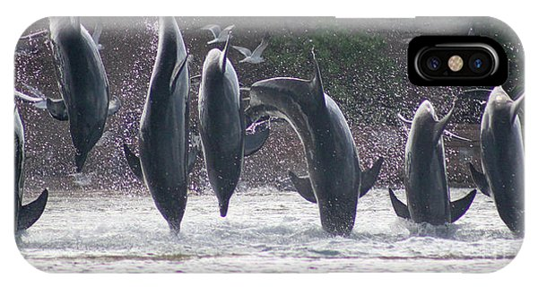 Dolphins Jump IPhone Case
