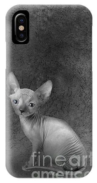 Sphynx Cat iPhone Cases (Page #8 of 10) | Fine Art America