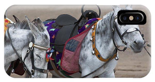 Donkeys On Blackpool Beach IPhone Case