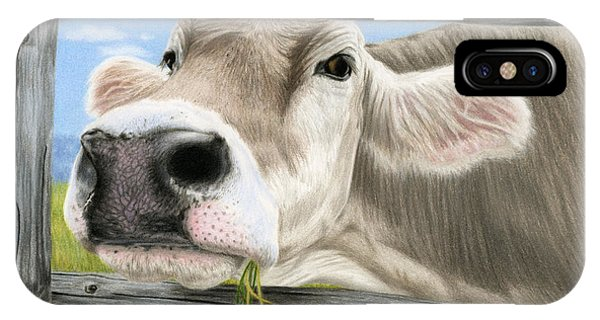 Barnyard iPhone Case - Don't Fence Me In by Sarah Batalka