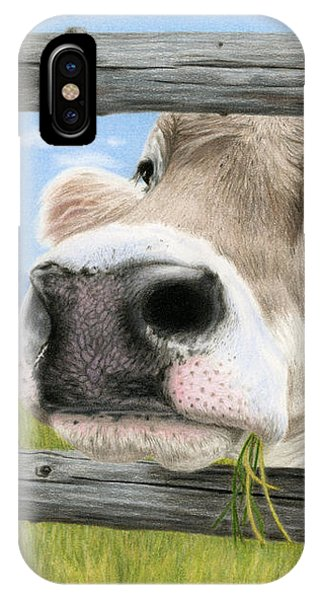 Barnyard Animals iPhone Case - Don't Fence Me In by Sarah Batalka