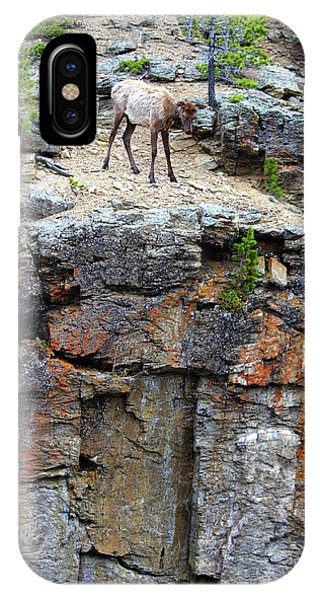 IPhone Case featuring the photograph Don't Jump by Shane Bechler