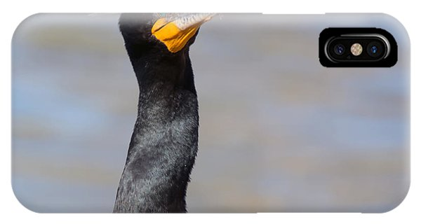 IPhone Case featuring the photograph Double-crested Cormorant by Tam Ryan