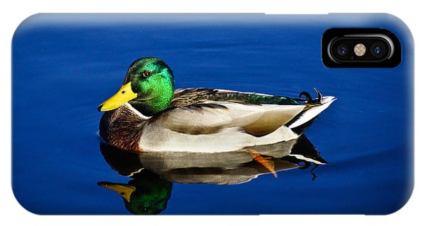 Double Duck IPhone Case