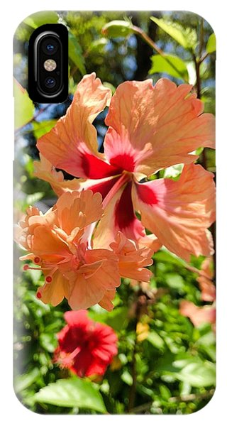 IPhone Case featuring the photograph Double Headed Hibiscus by Brian Eberly