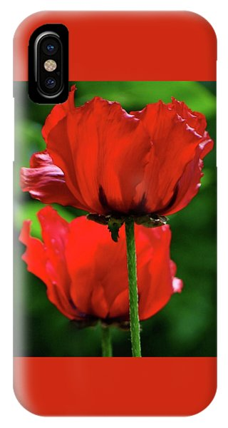 Double Red Poppies IPhone Case