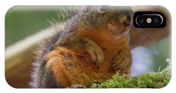 Douglas Squirrel IPhone Case