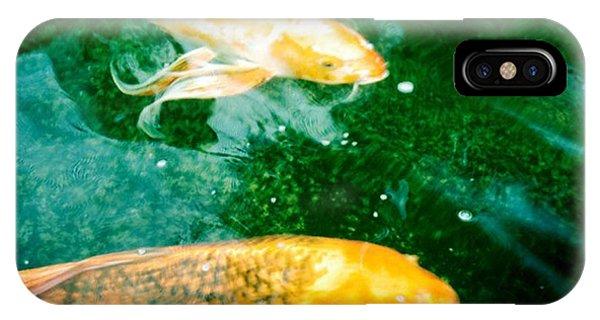 Downstream 1 IPhone Case