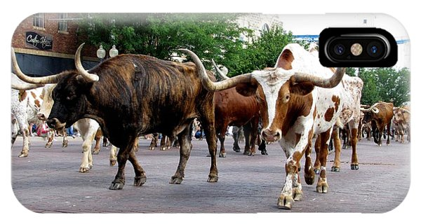 Downtown Cattle Drive IPhone Case