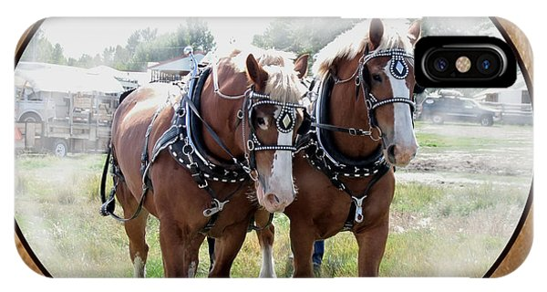 Draft Horse Harness iPhone Cases | Fine Art America