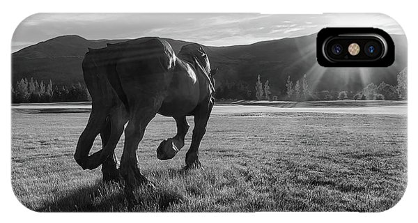 Draft Horse Statue IPhone Case